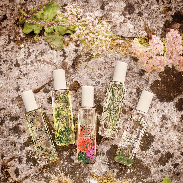 Soil, Test tube, Plant, Flower, Bottle, Glass bottle, Wildflower,
