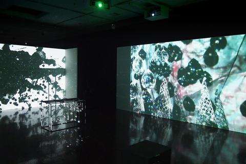 京都賞受賞記念 展覧会 ジョーン・ジョナス「Five Rooms For Kyoto: 1972–2019」