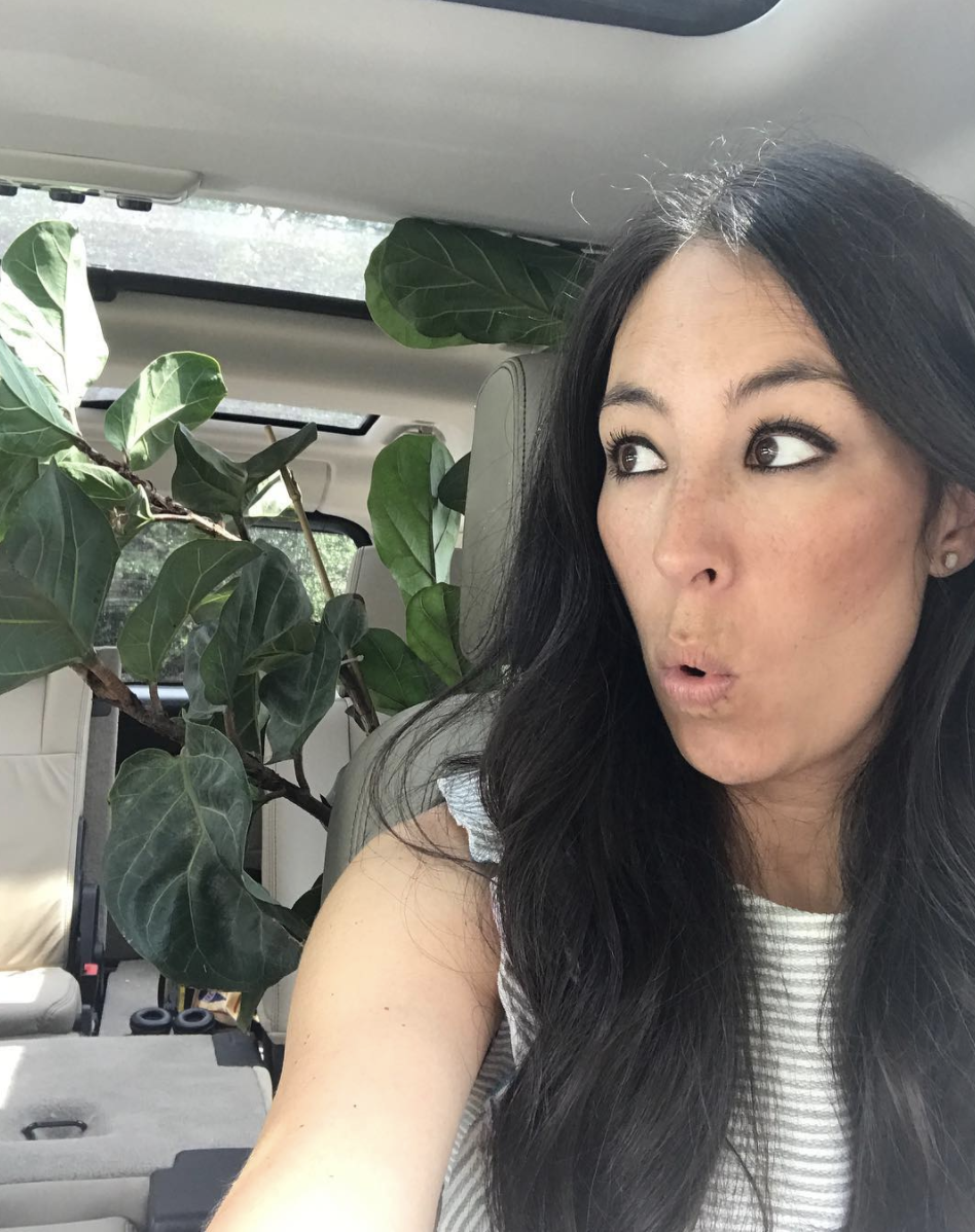 This Is Joanna Gaines's Absolute Favorite Flower to Grow