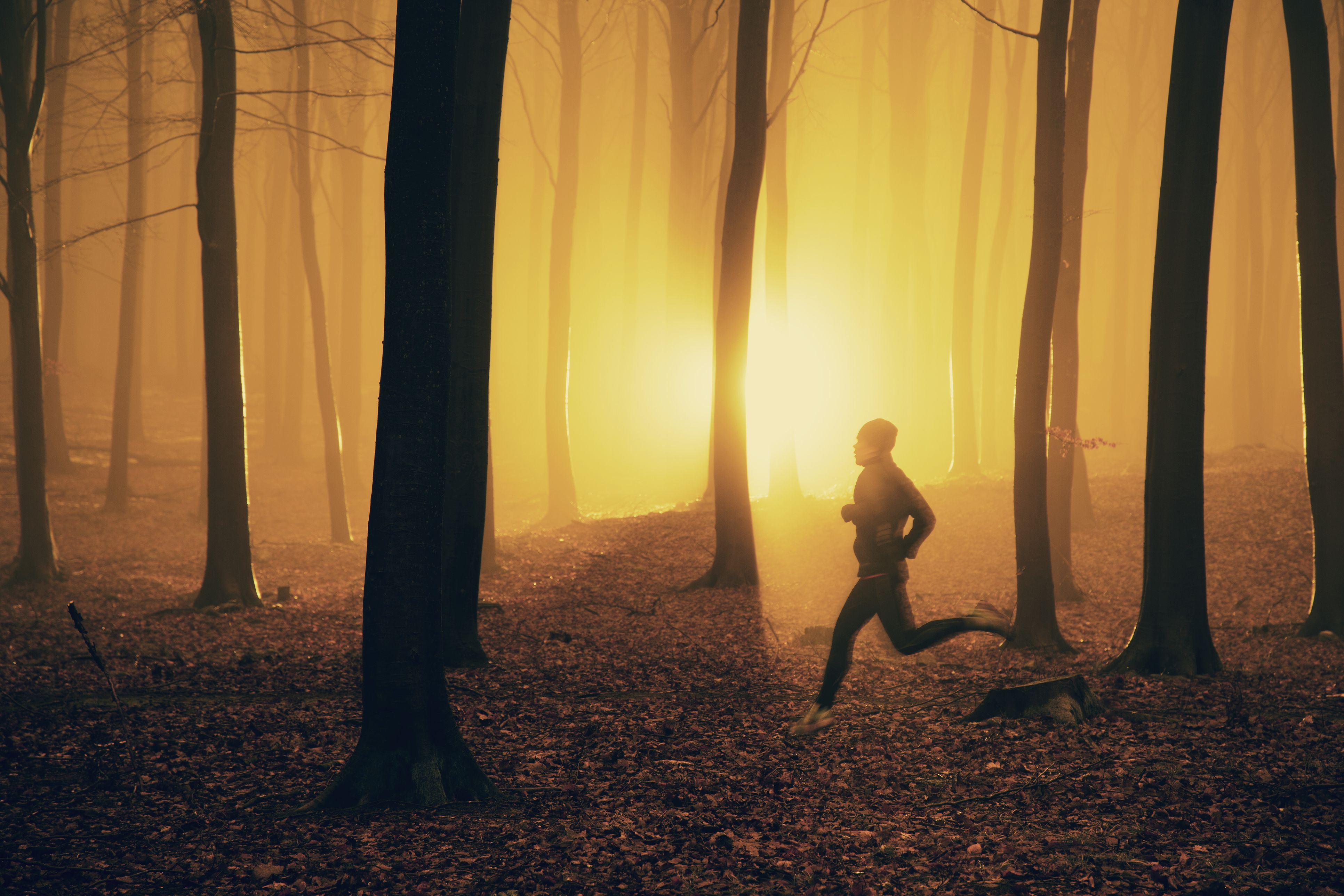 To Run More Efficiently, Follow Your Bliss