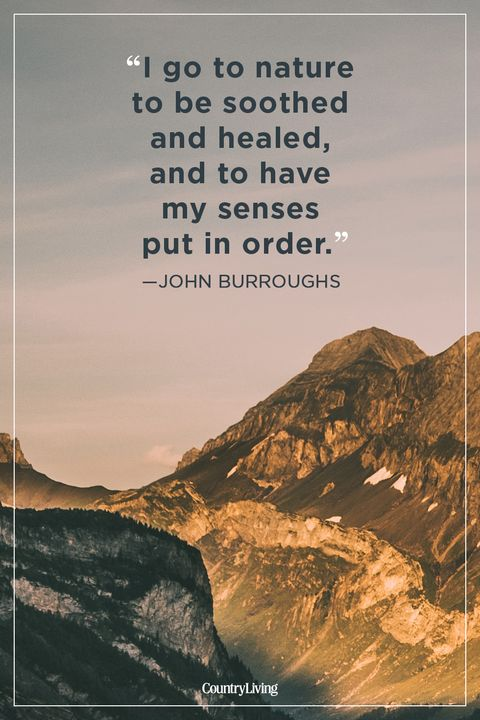 Image result for hiking quotes