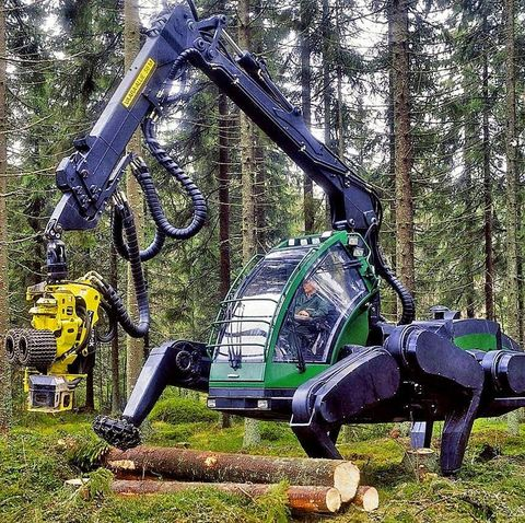 Natural environment, Tree, Forest, Grass, Machine, Plant, Woodland, Vehicle,