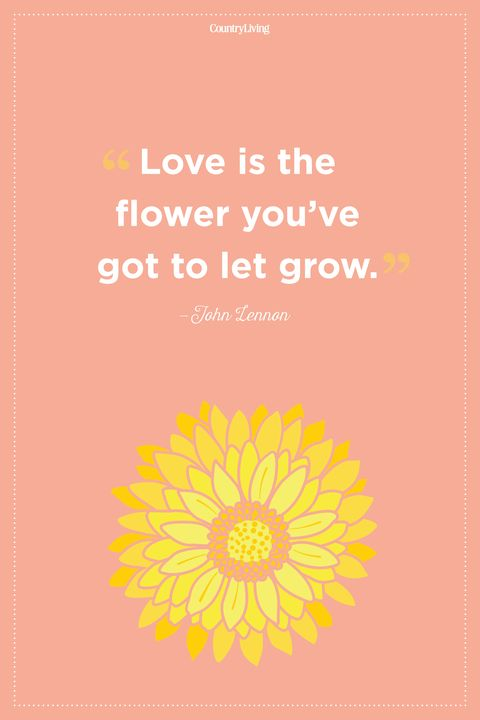 60 Inspirational Flower Quotes Cute Flower Sayings About Life And Love Interesting Flower Love Quotes