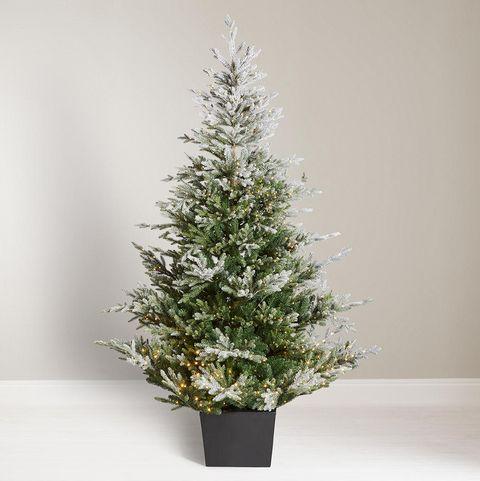 John Lewis & Partners Moonstone Cotswold Pre-lit Christmas Tree, 7ft