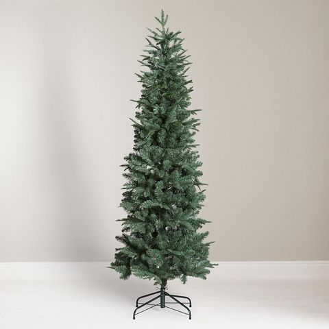 John Lewis Partners Slender Blue Spruce Unlit Christmas Tree 6ft