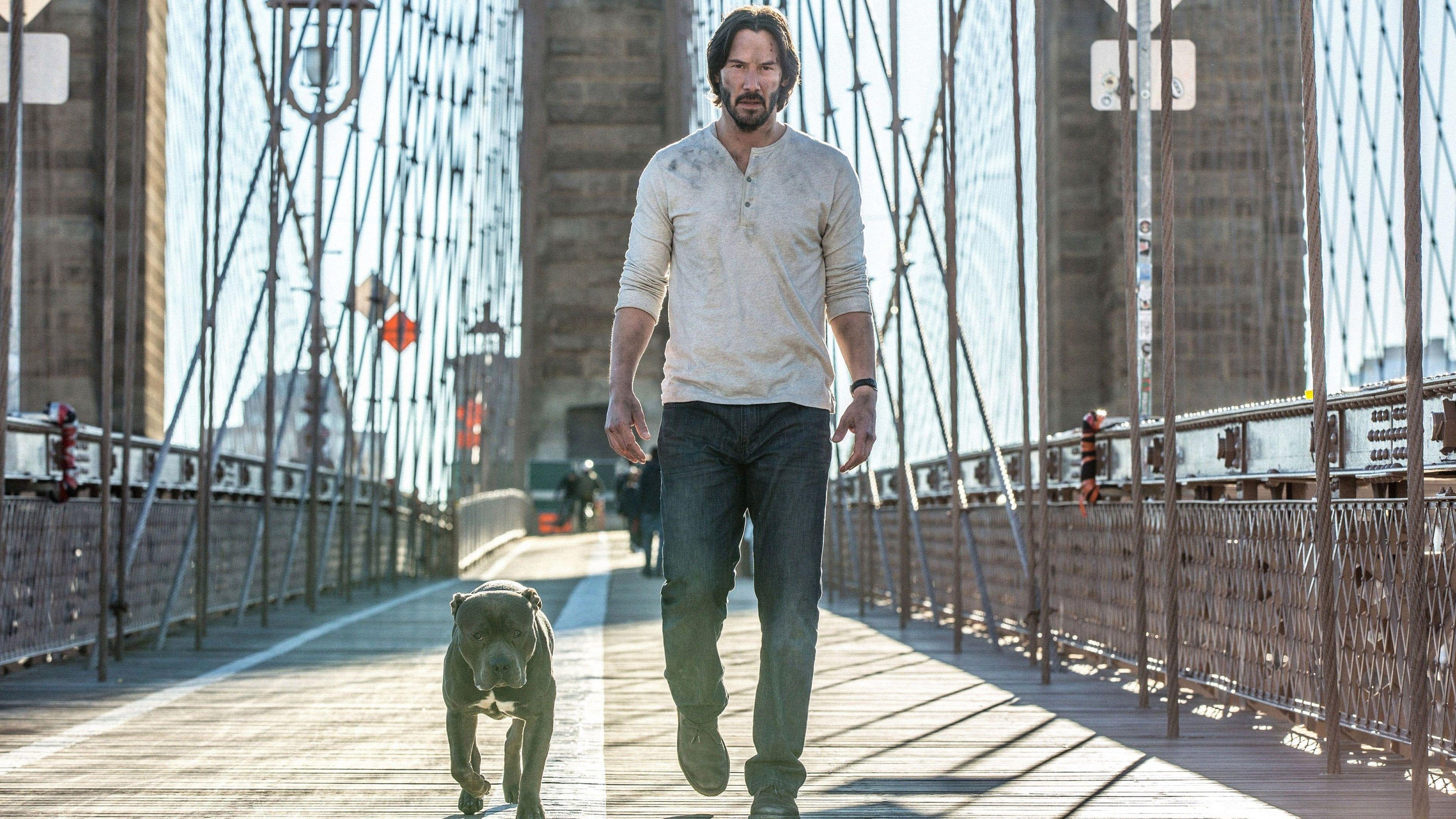 《捍衛任務3》最新畫面「殺神」基努李維出任務「把狗狗留車上」!這次終於不會再死一隻了⋯⋯ 嗎?