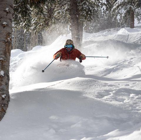 jonathan ellsworth skiing