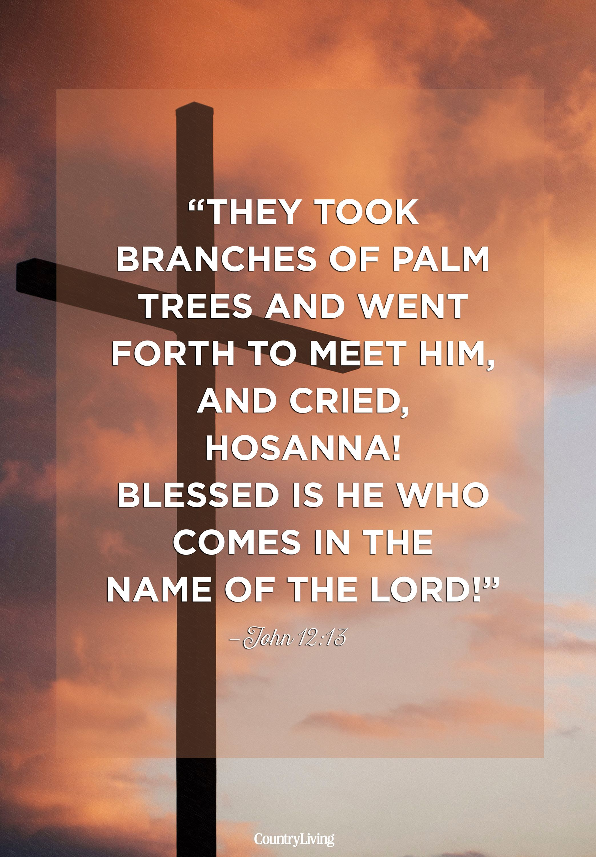 palm sunday quote