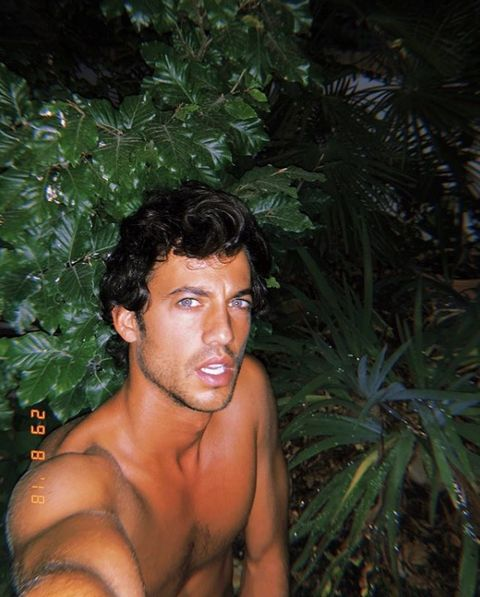 Hair, Jungle, Barechested, Hairstyle, Black hair, Muscle, Botany, Chest, Tree, Plant,