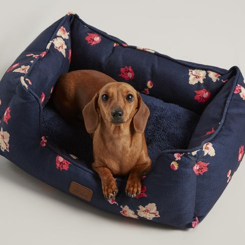 Joules floral dog bed