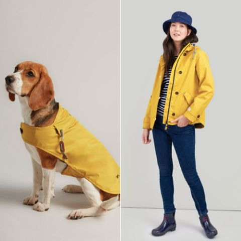 Joules coats for pets