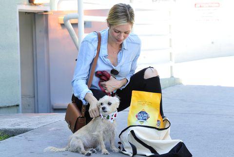 Brittany Snow Stocks Up On Nature S Recipe Premium Dog Food