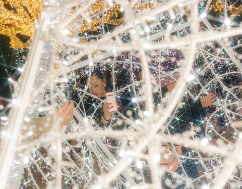 Largest Christmas Light Maze