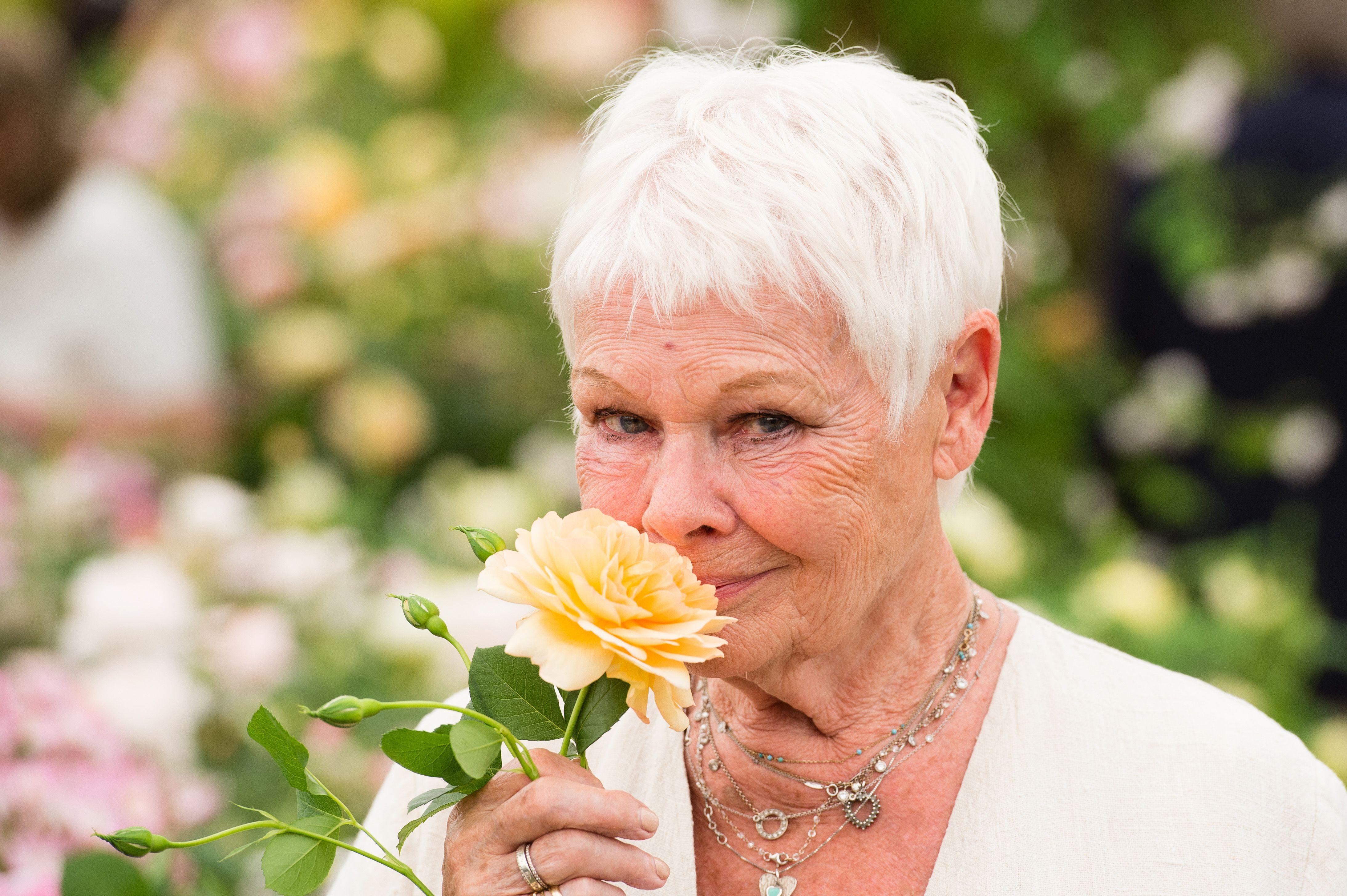 Dame Judi Dench To Open Rhs Garden Wisley Flower Show 2018