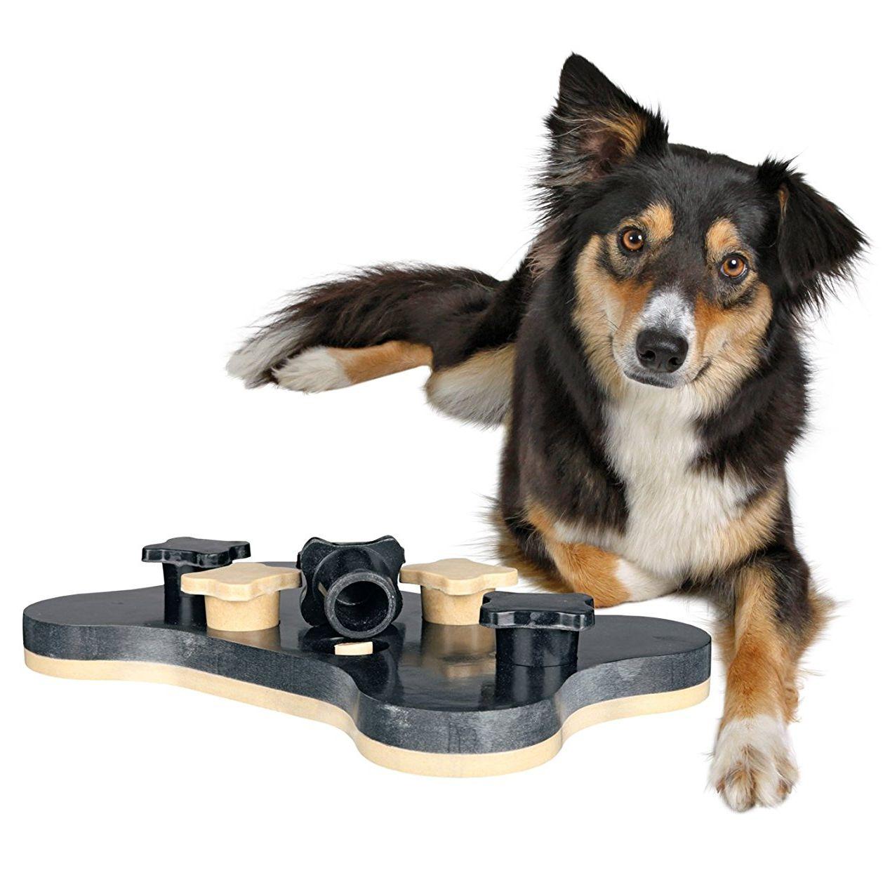 Juego de actividades para perros