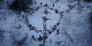 juego de tronos simbolo bosque final caminantes blancos