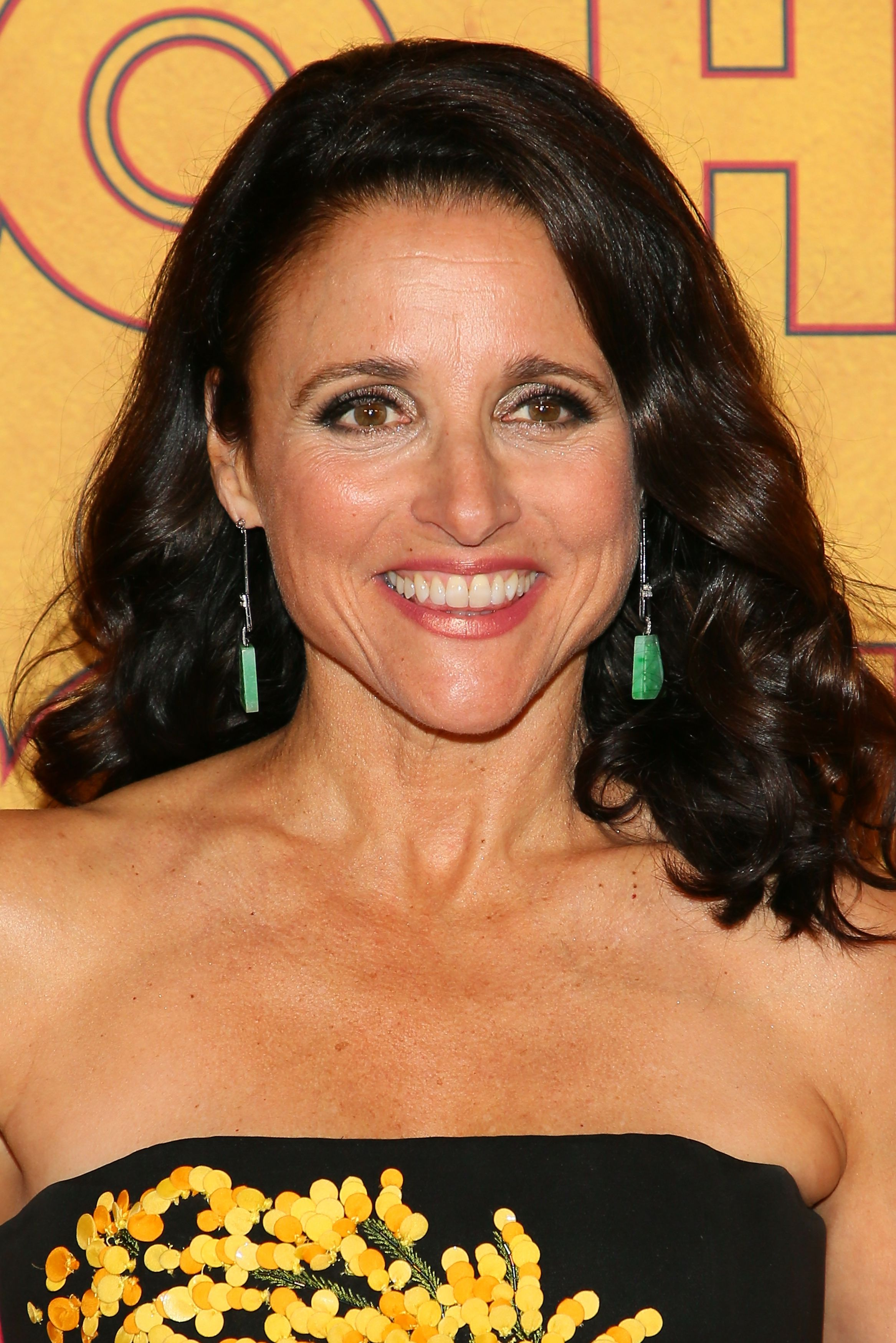 Gorgeous Hairstyles for Women Over 50 - julia louis dreyfus