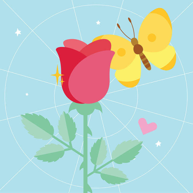 flower and a butterfly