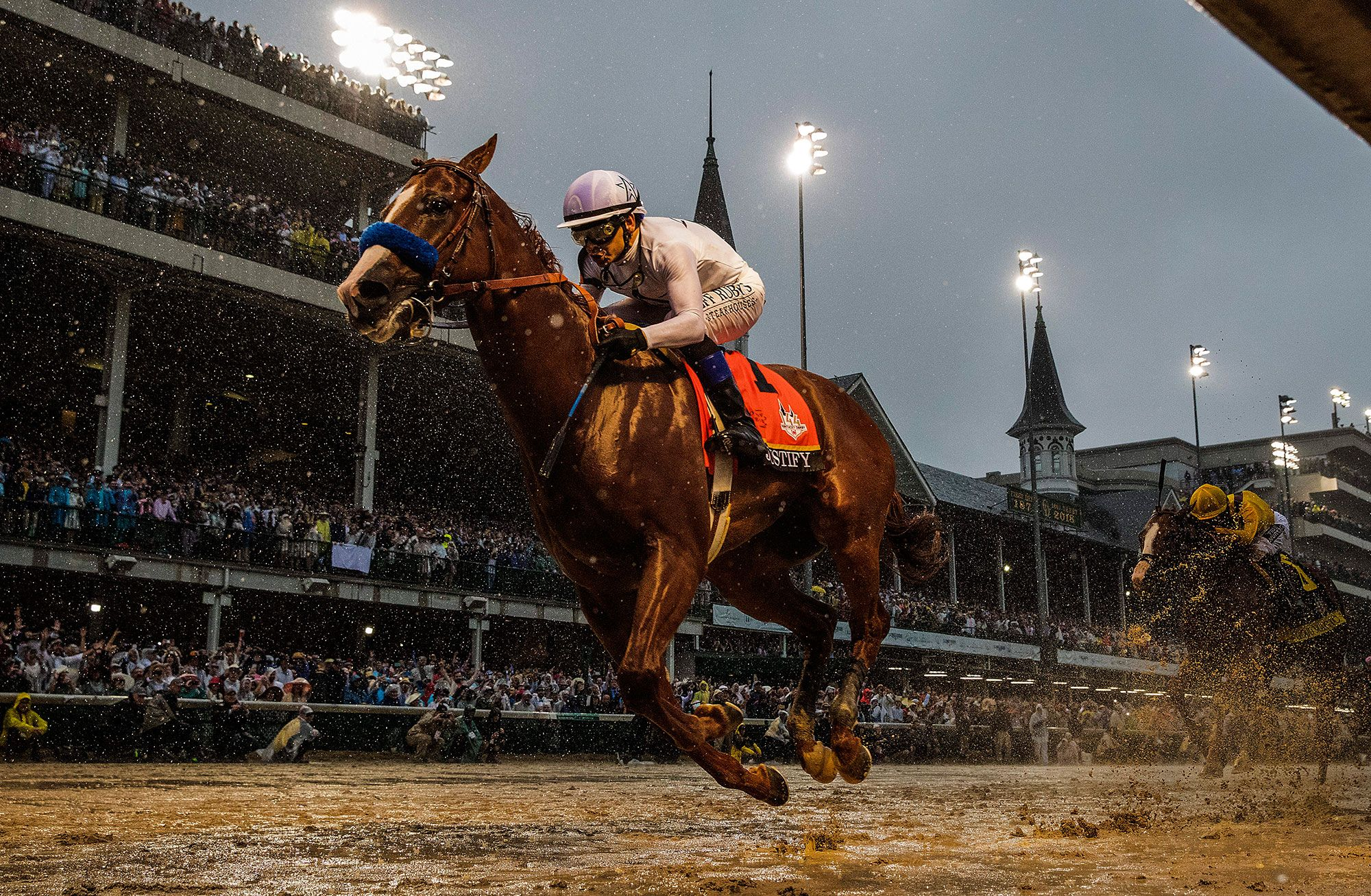 5 Things Runners Can Learn From Thoroughbred Racehorses