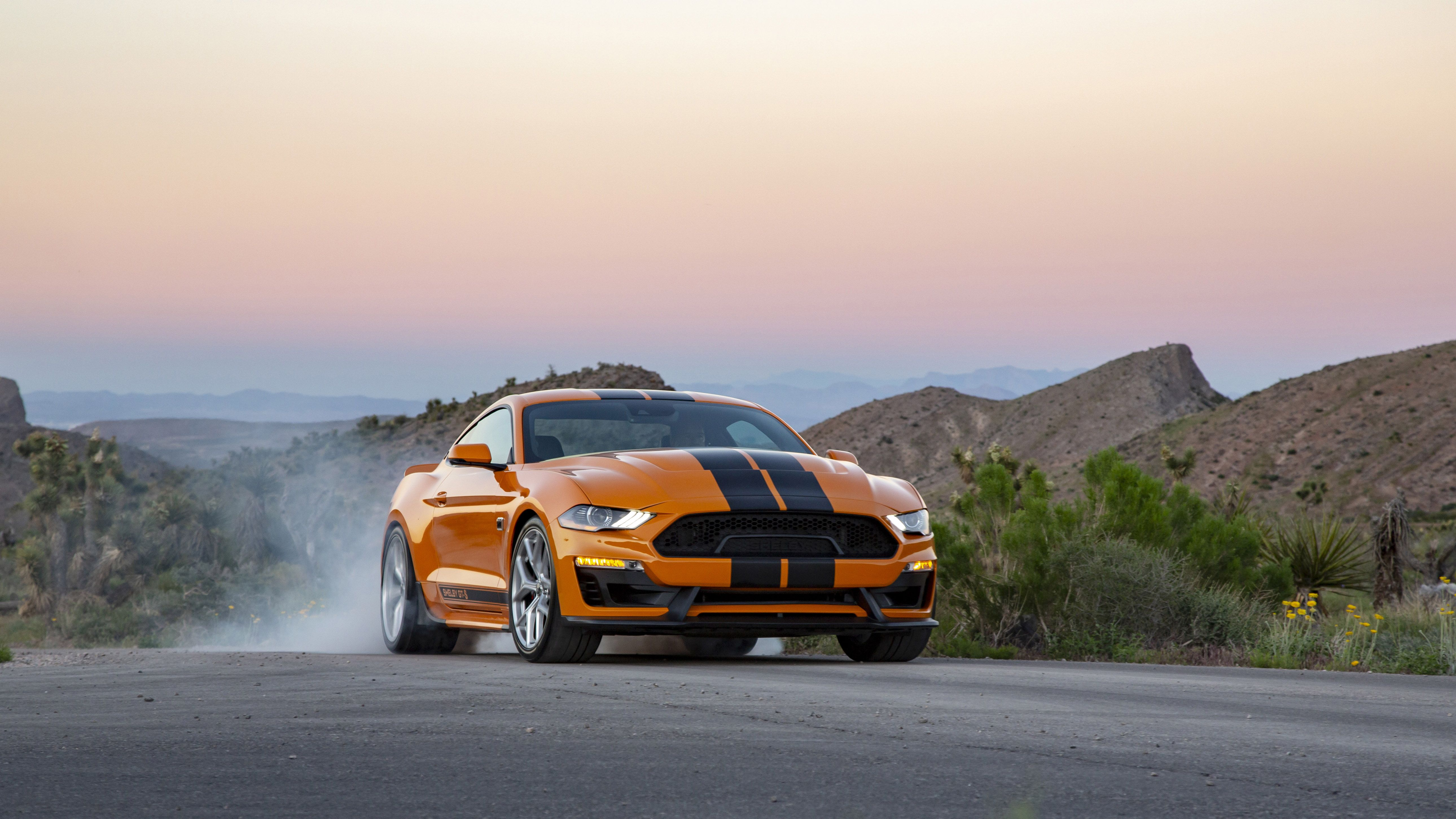 Mustang Gt Rental >> Shelby Ford Mustang Gt S For Sixt Rent A Car