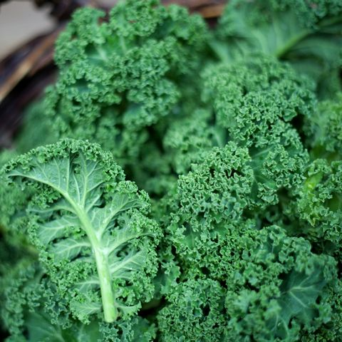 Kale in rustic basket on daylight  close Up
