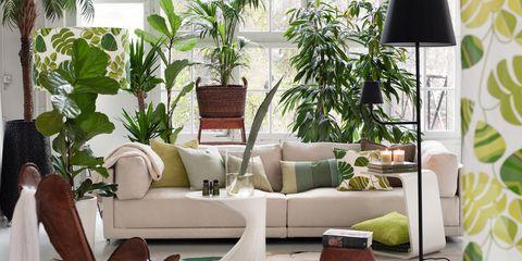 kamerplant interieur inspiratie elle decoration