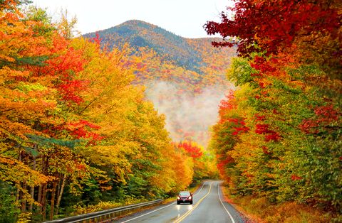 12 Scenic Drives to Take before the Leaves Fall
