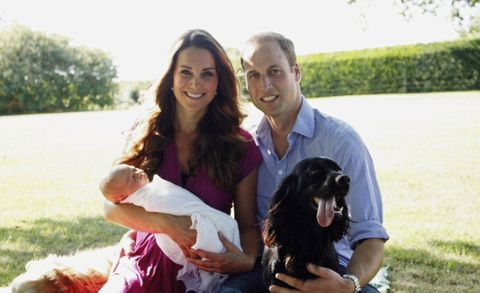 william and kate's dog lupo has sadly died