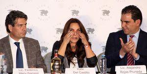 Kate del Castillo vuelve a Mexico