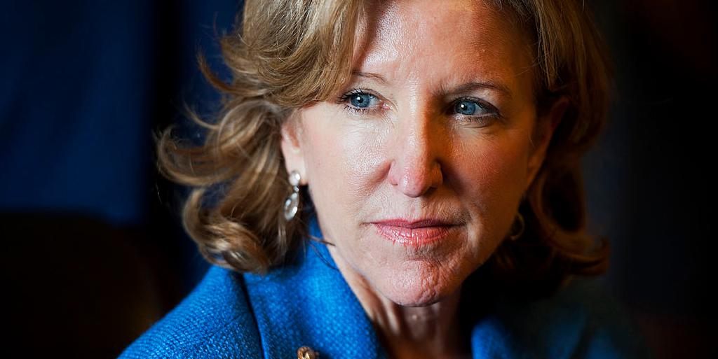 What Is Encephalitis? Former Senator Kay Hagan Dies After Powassan Virus Battle