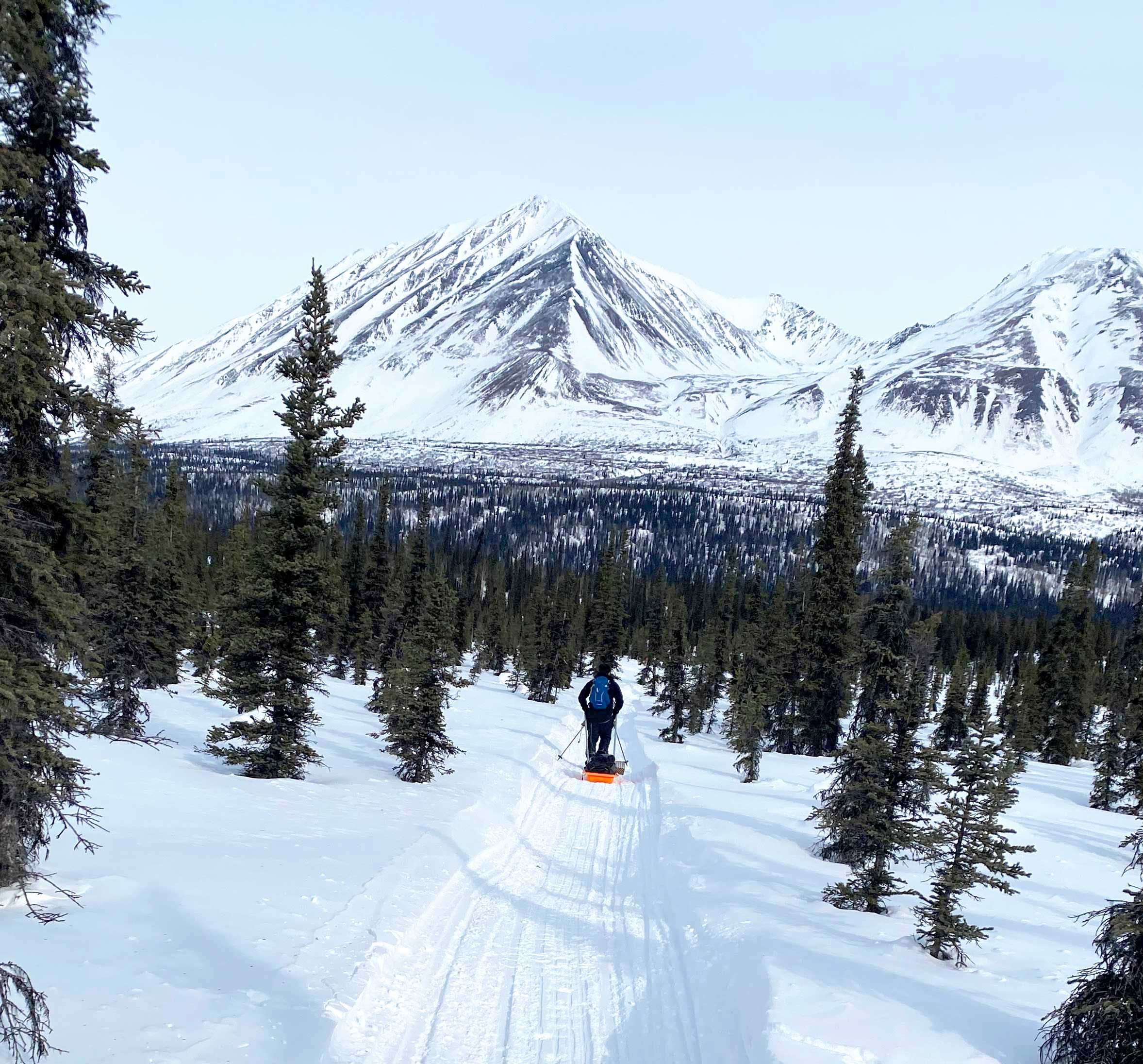 Ten Days, 350 Miles, and Countless Moose Encounters: What It's Like Running the Iditarod