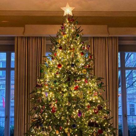 Kelly Ripa Christmas tree
