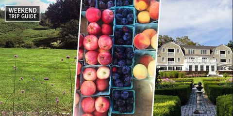 Natural foods, Local food, Fruit, Apple, Plant, Food, Tree, Rose family, Grass, Produce,