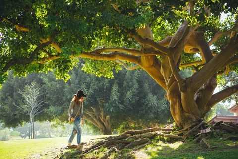 La storia della donna che ha sposato un albero per protesta ma anche (e soprattutto) per amore