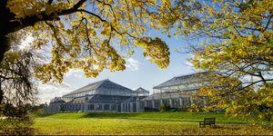 Jardines de Kew, Londres, Inglaterra