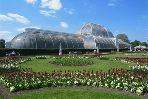 8 beautiful virtual garden tours around the world