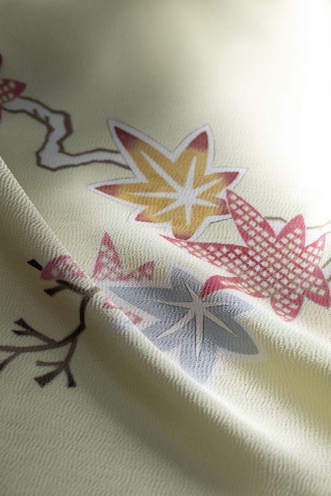美しいキモノ2020年秋号表紙の着物 染の百趣矢野 小袖写し 雛形 江戸小袖 雛形本 西川夕紅葉