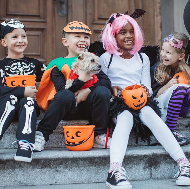 Bad Kids Halloween Costumes.25 Best Dog And Owner Costumes Matching Dog And Owner Halloween Costume Ideas