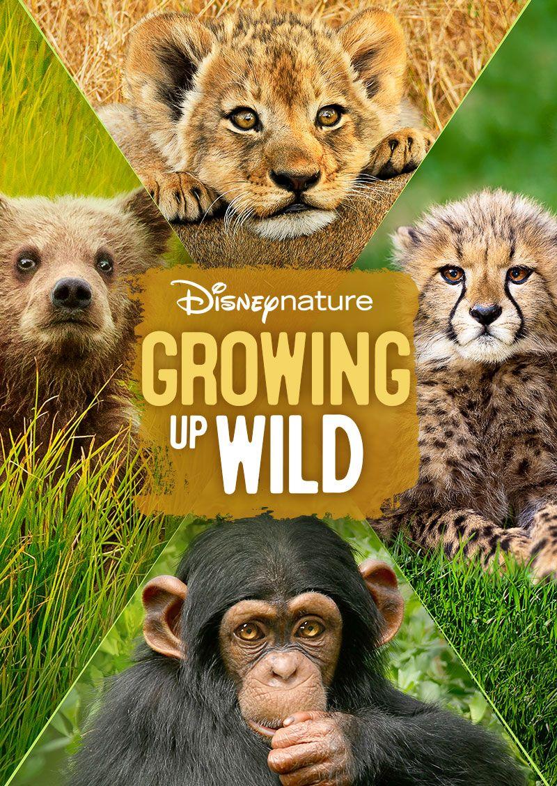 40 Best Kids Movies on Netflix 2019 - Family Films to Stream on Netflix