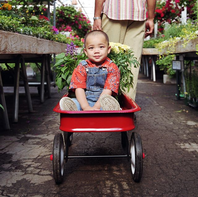 kid riding in red wagon in garden store