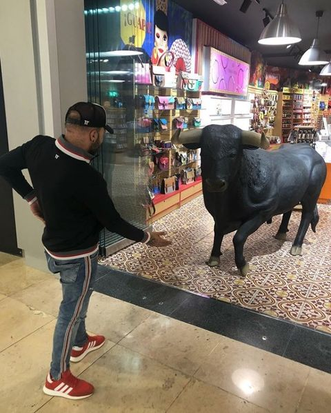 Bovine, Organism, Fun, Shopping, Working animal, Tourism, Bull, Temple, Vacation, World,