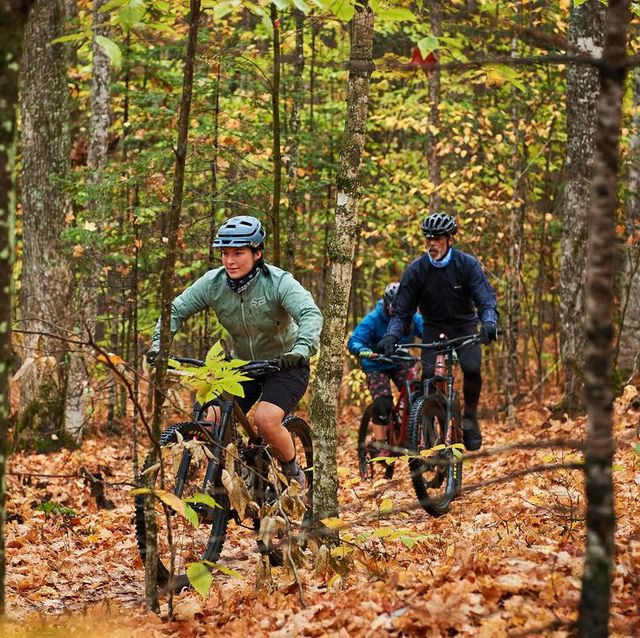 kingdon trails