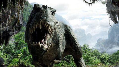 Dinosaur, Tree, Rock, Wildlife, Jungle, Adaptation, Tyrannosaurus, National park, Plant, Forest,