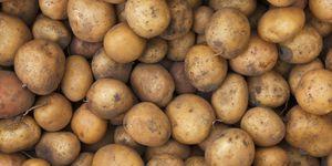 aardappels bewaren