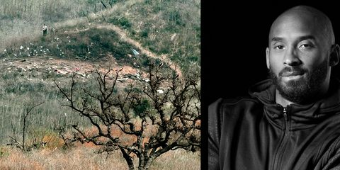 Tree, Adaptation, Human, Branch, Portrait, Photography, Plant, Photomontage, World, Art,