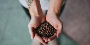 koffie, cafeine, prestatie, zwart goud