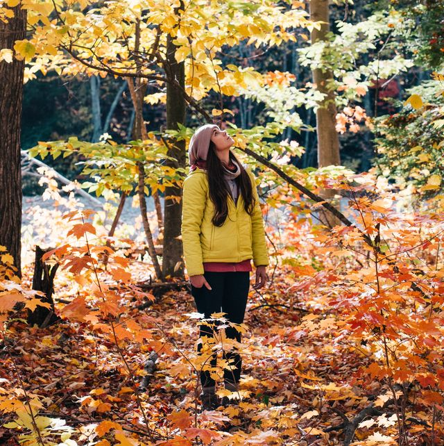girl in the woods looking at fall foliage