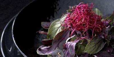 Kruidensalade rode basilicum