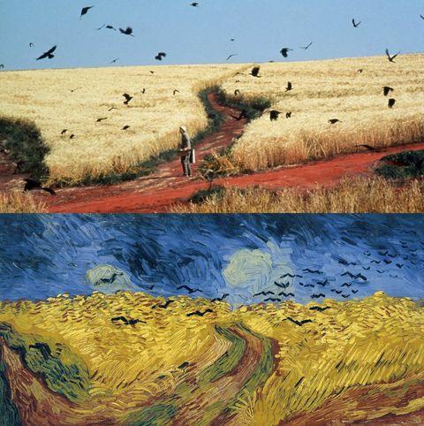 comparaciones entre peliculas y pinturas