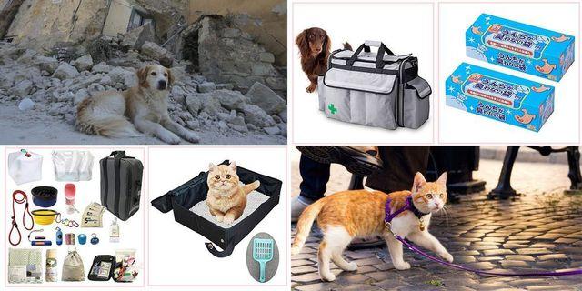 地震や災害にどう備える? 犬・猫防災グッズ30選